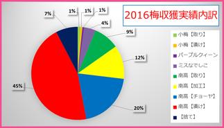 2016梅収穫実績内訳 和×夢 nagomu farm