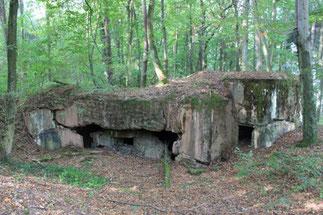 Gesprengter Bunker im Bienwald