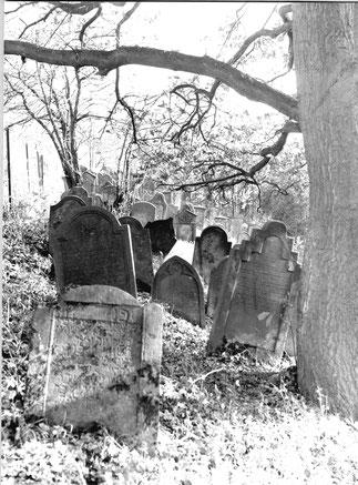 Jüdischer Friedhof in Flehingen – Titelbild zum Rundbrief 54