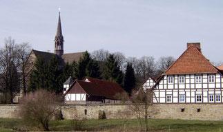 Foto: Stebra/Wikimedia