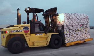 CAS is the number one cargo handler in the U.S.  -  company courtesy