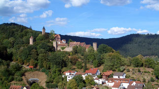 Burg am Neckar, Nähe Heidelberg bei mobilfunkfreier FEWO