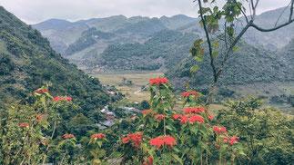 Hauptstrasse-von-Son La-nach-Dien Bien Phu-Ausblick-Tal-und-Berge-mit-Weihnachtstern-Fotostopp-Reisebeschreibung
