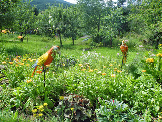 Landhaus Riedelstein: Entspannen im Garten mit herrlichem Ausblick