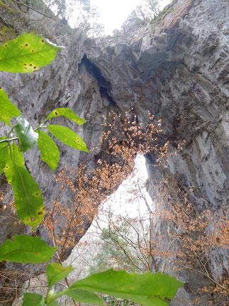 岡山県新見市南部の鍾乳洞の名残、国の天然記念物「羅生門」