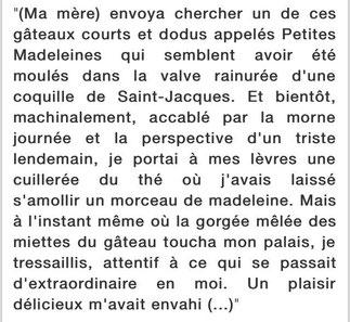 La madeleine de Proust (en fait une... biscotte !)
