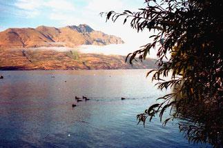 geheimnisvoll und ruhig der Wakatipi-Lake