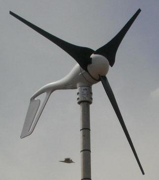400W Windkraftanlage der Fa. Southwest Windpower Typ AirX Marine. Nicht mehr am Markt verfügbar, Nachfolger ist die WKA vom Typ R30.