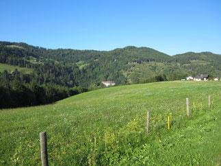 Das Märchenmotiv von einer Parallelwelt im Wald mit Kontakt mit den Menschen gibt es in allen europäischen Märchen.