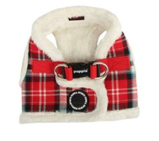 L'alternative aux vêtement pour chien : le harnais manteau