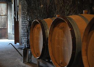 wines-cellar-guided-wine-tours-tastings-Loire-Valley-vineyard-Vouvray-Touraine-Tours-Amboise-Rendez-Vous-dans-les-Vignes-Myriam-Fouasse-Robert