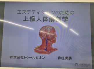 モリマサエステスクール上級解剖学 名古屋講座