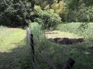水辺となる池が3個所完成