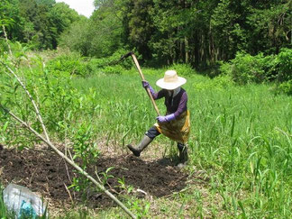 谷戸内湿地回復地作り