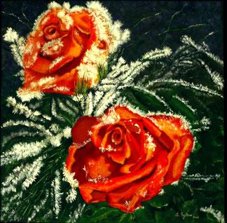 Rosen im Winter