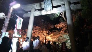 金ヶ崎宮の桜
