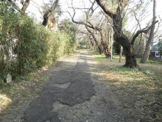 戦前、この一帯にあった板橋火薬製造所内を通る電気軌道(トロッコ)の線路敷跡