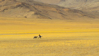 Privat-Reise Ladakh und Zanskar Trekking Gipfelbesteigung individuell