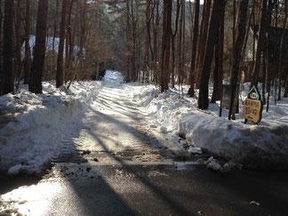 山麓線からクラシコ前までの道 除雪できています