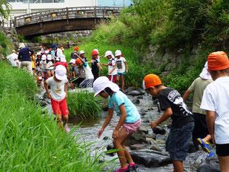 求女川で川遊び(1学年)