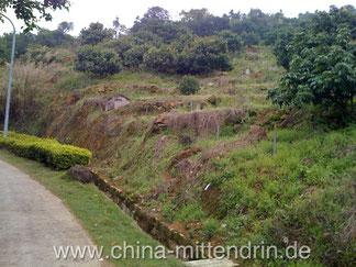 Gräber in den Bergen von Zhangzhou, Fujian (Xiamen)
