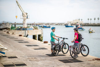 Haibike e-Bikes und Pedelecs in der e-motion e-Bike Welt in Würzburg kaufen