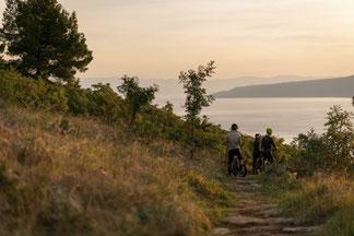 Specialized e-Bikes und e-MTBs in der e-motion e-Bike Welt München West kaufen