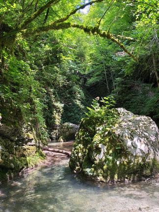 Kozjak Fluss auf dem Weg zum Wasserfall