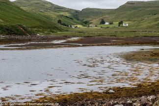 typische Landschaft auf Skye