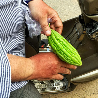 Bittergurke – Erste Hilfe bei Sonnenbrand