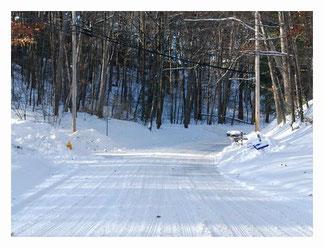 降った雪が固まって凍結している場所があります