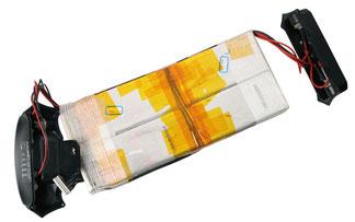 Typische Lipo-Batterie mit jeweils zehn Flachzellen in Reihenschaltung. Und aufgetoppt: das BMS. Am Bildrand unten links der elfpolige Servicestecker.