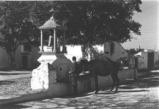 La fuente con S. Antón en un lateral de la Plaza