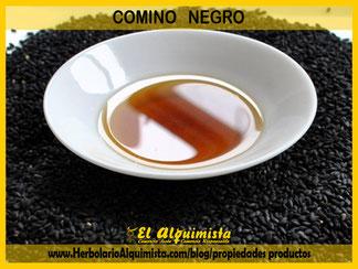 Estudios del Comino Negro contra el cáncer - Blog del Herbolario Alquimista Arrecife Lanzarote