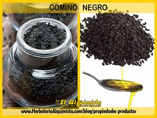 Propiedades del Comino Negro - Blog del Alquimista Arrecife Lanzarote