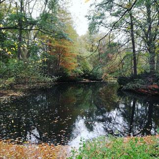 Top 5 jogging trails in Berlin