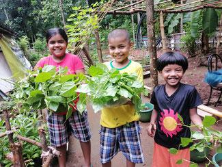 家庭菜園支援のニーズは高く、今後の可能性についても再確認する機会となった。