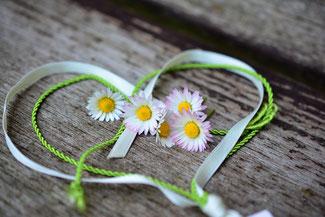 Herz aus grünen Bändern, innerhalb fünf Gänseblümchen