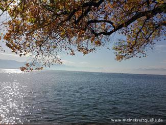 Monatsmotto, Bodensee, Kraftquelle, See als Kraftquelle,