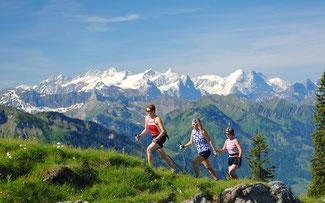 xxxxxxxxxxxxxxxxxxxxxxxxxxxxxxBersteiger, Nord Alb.Alpen-Gebiet