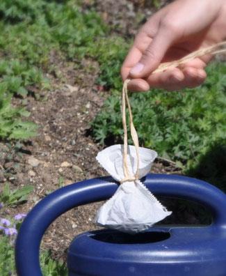 Düngen mit Kompost Tees ist eine unbedenkliche, sanfte und biologische Variante um die Gesundheit und Vitalität Ihrer Pflanzen zu stärken. www.the-golden-rabbit.de