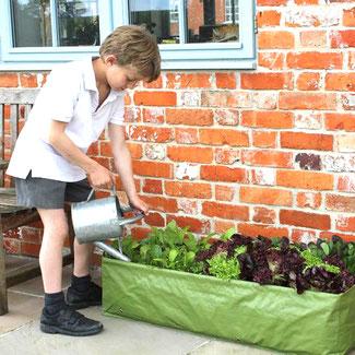 """Der Pflanzsack """"Kleines Beet"""" ist ideal für die Anzucht von Salaten, Radieschen und Gewürzen bei www.the-golden-rabbit.de"""