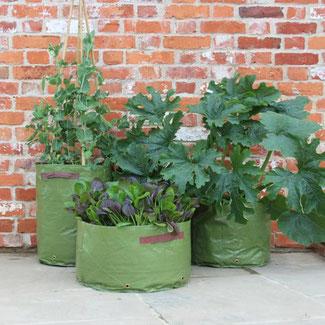 Pflanzsäcke für die Terrasse; für Gemüse und Salate bei www.the-golden-rabbit.de