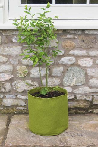 Urban Gardening Vigeroot Pflanztasche - Pflanzsack 20 Liter