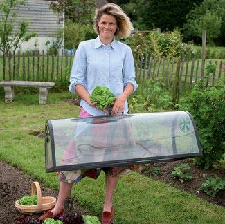 Die große Anzucht-Cloche ist ein kleines Gewächshaus und ein großartiger Helfer im frühsommerlichen Garten. Sie schützt zarte Pflanzen vor Schädlingen, fördert das Wachtum und unterstützt die Reifung. Bei www.the-golden-Rabbit.de