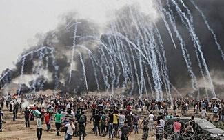 Leandro Albani   Asesinatos y negocios de Israel en Gaza