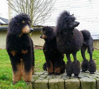 Mama und ihre stolzen Kinder ...