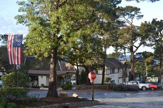 Straße mit Bäume in der Mitte entlang kleiner Häuser