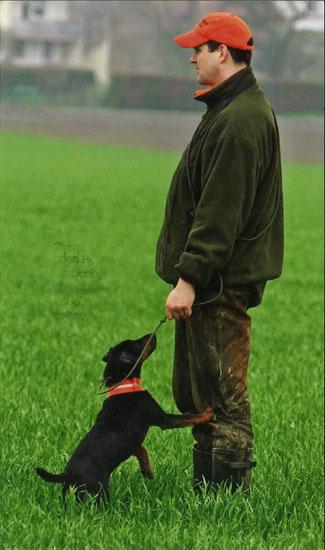 Michael mit Groll (Deutscher Jagdterrier) auf der Prüfung