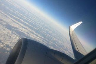 Ryanair, Flugzeug, Reiseflug, Die Traumreiser